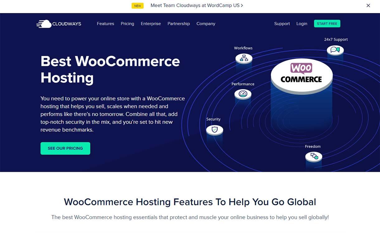 Cloudways-hosting-services