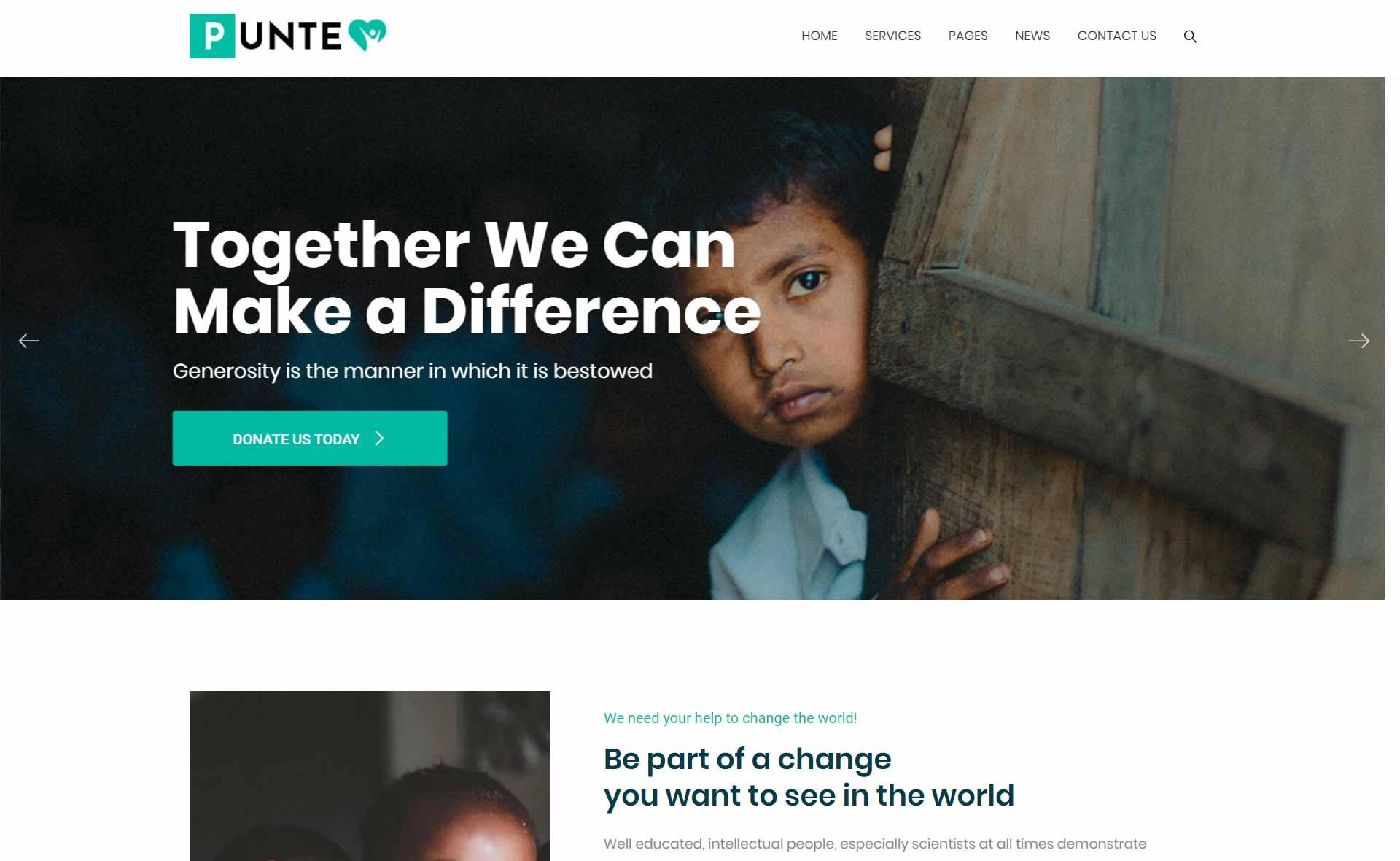 charity-demo-punte