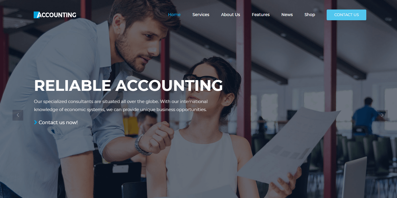 Accounting - Best Financial Company WordPress Themes