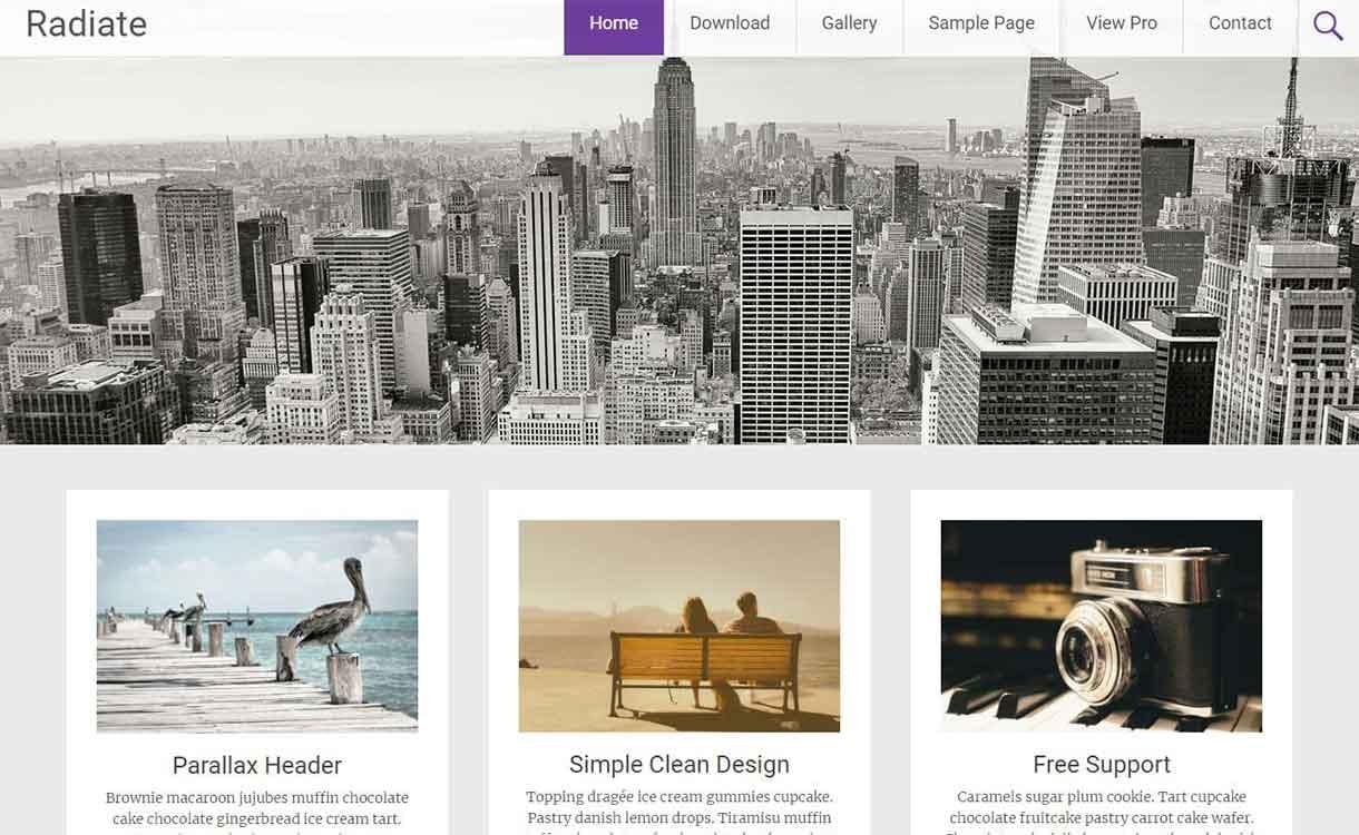 radiate-best-free-responsive-wordpress-theme