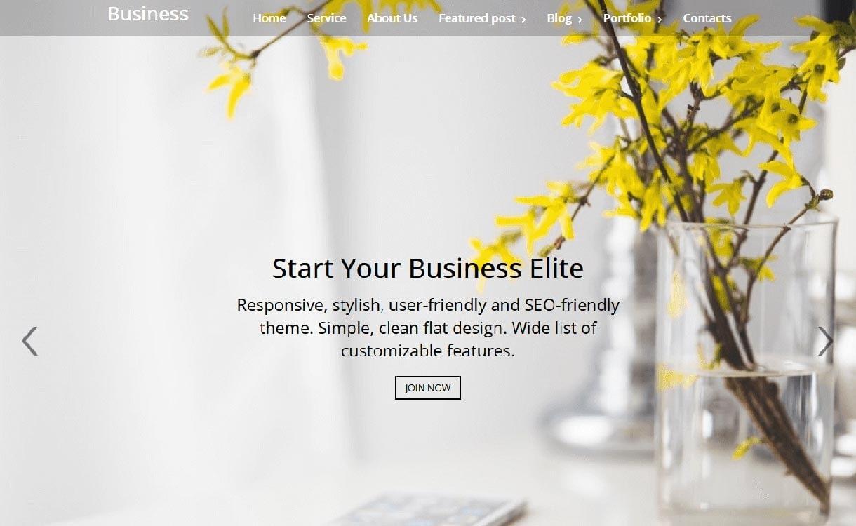 business-elite-best-free-responsive-wordpress-theme