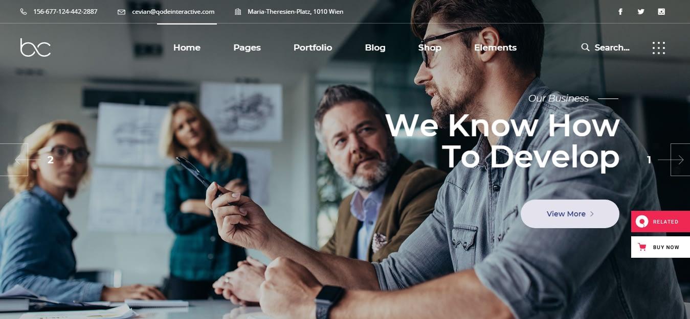Cevian – Best WordPress Startup Theme