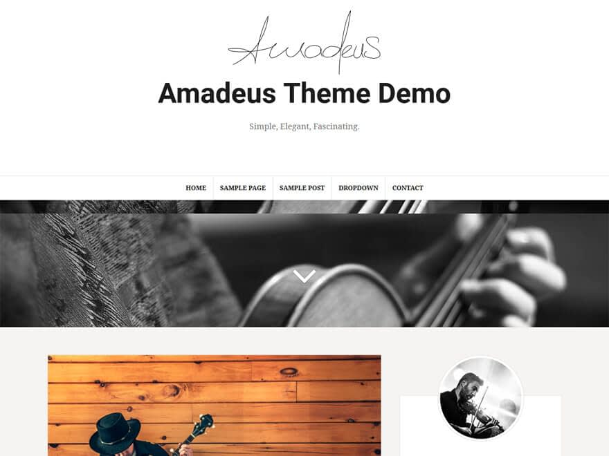 Amadeus - Free WordPress Blog Themes