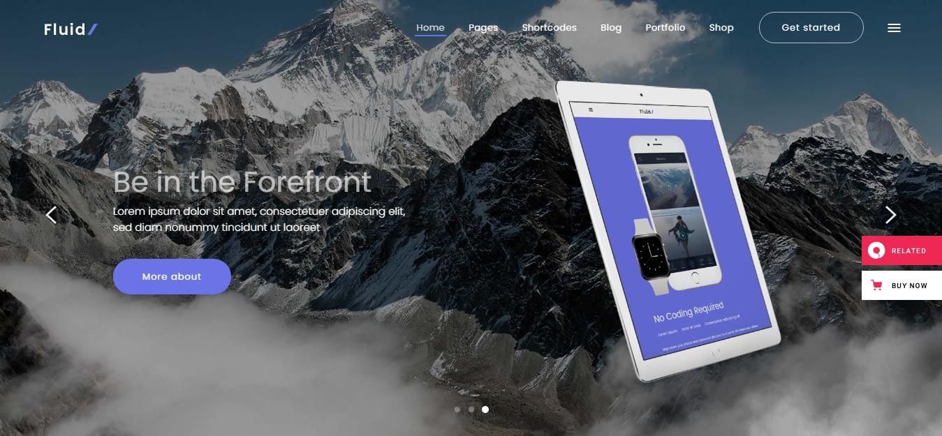 Fluid – Best WordPress Startup Theme