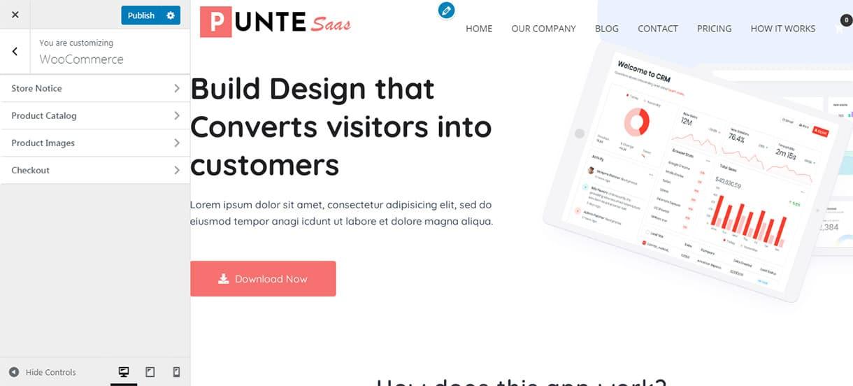 Punte WooCommerce Customization