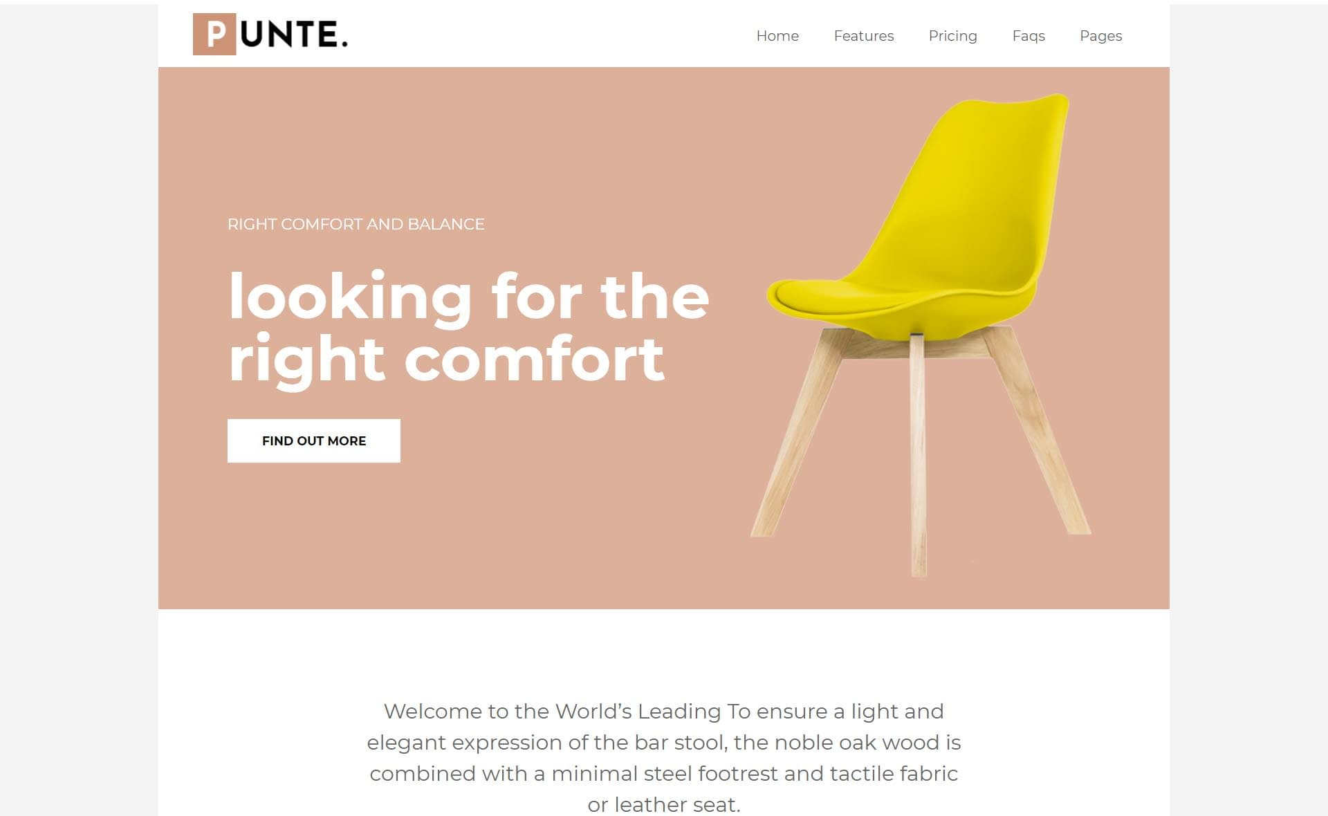 one-product-Demo-Punte