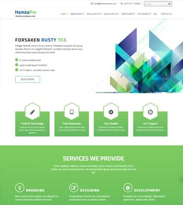 Hamza Pro - Premium Business WordPress Theme