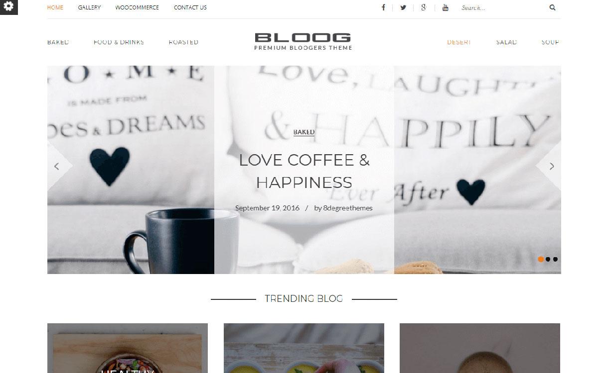 bloog-pro-best-premium-wordpress-blog-themes