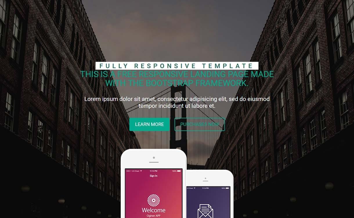 oginer-best-free-mobile-app-wordpress-theme