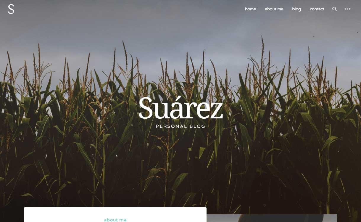 suarez-best-premium-wordpress-blog-themes